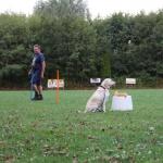 Fun en gedrevenheid tijdens de onderlinge wedstrijd bij de Funtraining